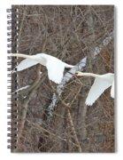 White Swans In Flight 1589 Spiral Notebook