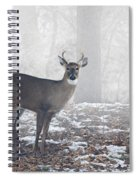 White Tailed Deer Buck In The Mist Spiral Notebook