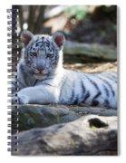 White Tiger Cub Spiral Notebook