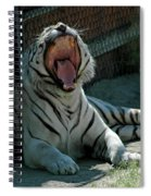 White Tiger Reno Nv 3 Spiral Notebook