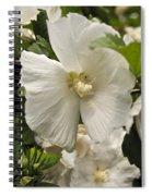 White Tree Flower Spiral Notebook