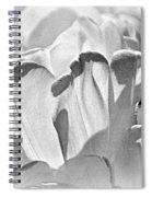 White Tulip Spiral Notebook