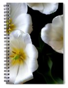 White Tulips Spiral Notebook