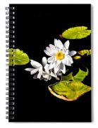 White Water Lilies Spiral Notebook