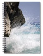 White Water Paradise Spiral Notebook