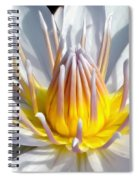 White Waterlily Spiral Notebook