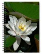 White Waterlily Lotus Spiral Notebook