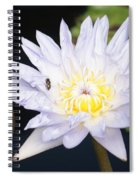 White Waterlily With Fly...   # Spiral Notebook