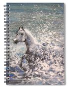 White Wild Horse Spiral Notebook