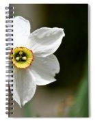 White Wind Bravery Spiral Notebook