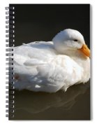 White Wings Spiral Notebook
