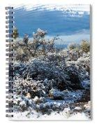 White Winter In The Desert Of Tucson Arizona Spiral Notebook