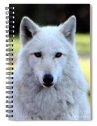 White Wolf Close Up Spiral Notebook