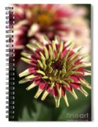 White Zinnia Spiral Notebook