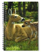 Whitetail Deer - First Spring Spiral Notebook