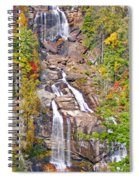 Whitewater Falls Vertical Spiral Notebook