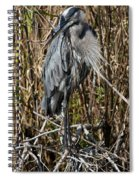 Who Is There - Great Blue Heron Spiral Notebook