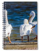 Who Is With Me On This? Spiral Notebook