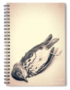 Who Killed Cock Robin Spiral Notebook
