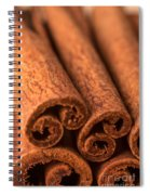 Whole Cinnamon Sticks  Spiral Notebook