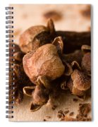 Whole Cloves Spiral Notebook