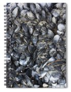 Whole Lotta Clams Spiral Notebook