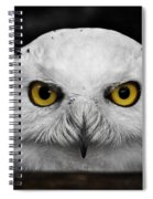 Whoooo's There?  Spiral Notebook