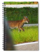 Why Did The Bobcat Cross The Road Spiral Notebook
