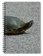 Why Did The Turtle Cross The Road Spiral Notebook