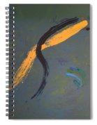 Why So Sad... Pretty Girl  Spiral Notebook