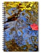 Wiggling Water Spiral Notebook