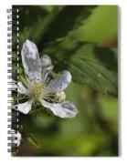 Wild Alabama Blackberry Blossom Spiral Notebook