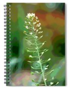 Wild And Wonderful Spiral Notebook