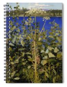 Wild Angelica Spiral Notebook