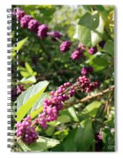 Wild Beautyberry Bush Spiral Notebook