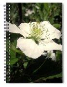 Wild Blackberry Blossom Spiral Notebook
