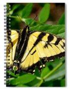 Wild Butterfly Spiral Notebook