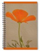 Wild California Poppy No 2 Spiral Notebook