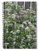 Wild Caraway And Old Fence Spiral Notebook