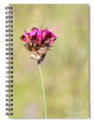 Wild Carnation With Nocturnal Moth Spiral Notebook