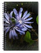Wild Chickweed 2013 Spiral Notebook