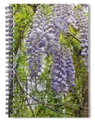 Wild Child Of The Woods Spiral Notebook