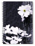 Wild Dogwood Blooms Spiral Notebook