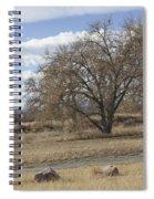 Wild Field Spiral Notebook