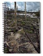 Wild Fire Aftermath Spiral Notebook