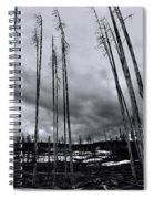 Wild Fire Aftermath In Black And White Spiral Notebook