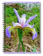 Wild Flag - Iris Versicolor Spiral Notebook