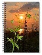 Wild Flower Ia Mlo Spiral Notebook