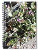 Wild Flowers 1 Spiral Notebook