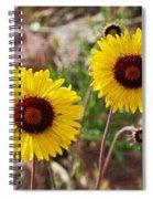 Wild Flowers Above The Rim Spiral Notebook
